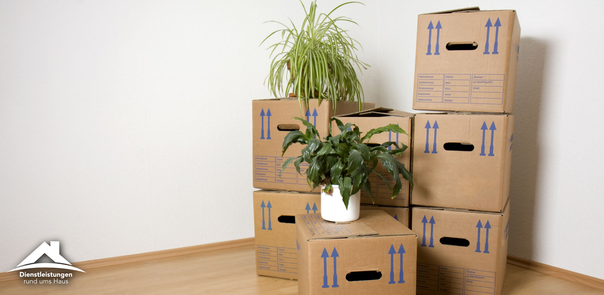 Umzugskartons aufeinander gestapelt, Zimmerpflanzen und leerer Raum